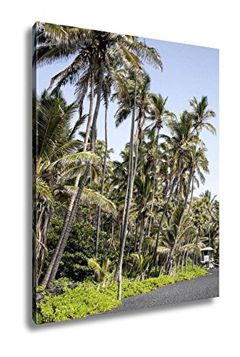 Ashley Canvas USA Hawaii Big Island Punaluu Beach, Wall Art Home Decor, Ready to Hang, Color, 20x16, AG6409111 by Ashley Canvas