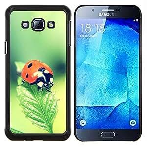 TECHCASE---Cubierta de la caja de protección para la piel dura ** Samsung Galaxy A8 ( A8000 ) ** --La mariquita
