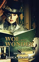 Woe and Wonder: 2016 Story of the Month Club Anthology