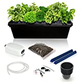 tomato bucket - SavvyGrow DWC Hydroponics Growing System Kit - 2 Large Airstone, 14 Plant Sites (holes) Bucket w/Air Pump - Best Indoor Herb Garden for Cilantro, Mint - Complete Hydroponic Setup Grow Fast at Home by