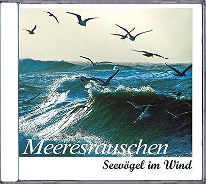 Meeresrauschen – Seevögel im Wind * Audio-CD
