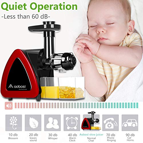 Aobosi Slow Masticating juicer Extractor, Cold Press Juicer