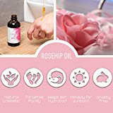 Organic Rosehip Seed Essential Oil - 4 oz Pure Cold