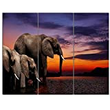 Elephant At Watering in Africa African on Canvas Art Wall Photgraphy Artwork Print