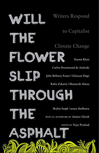 will-the-flower-slip-through-the-asphalt-writers-respond-to-capitalist-climate-change