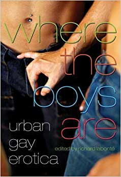 Where the Boys Are: Urban Gay Erotica