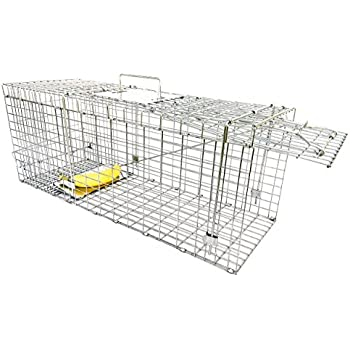 Large Collapsible Humane Live Animal Trap Perfect For Raccoons, Stray Cats, Gopher, Opossum, Rabbits