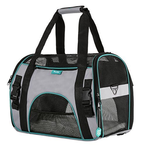 Pet Carrier for Dogs & Cats by PAWDLE Comfort Airline Approved Travel Tote Soft Sided Bag (Small, Grey)