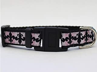 product image for Diva-Dog ~ Surf Cat 'Katrina' Break-Away Cat Collar