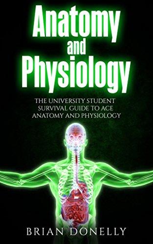 ace anatomy - 2