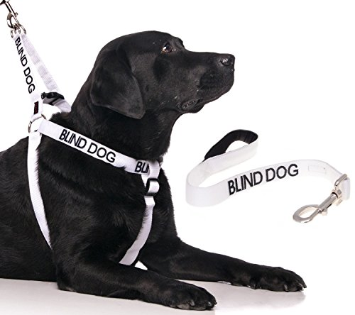 BLIND DOG White Color Coded Alert Warning L-XL Non-Pull Dog Harness and 2 4 6 Foot Padded Leash Sets (No/Limited Sight) PREVENTS Accidents By Warning Others of Your Dog in Advance (Harness + 2 Foot Short Leash)