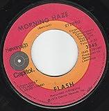 45vinylrecord Small Beginnings/Morning Haze (7