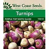 Turnip Seeds - Purple Top White Globe