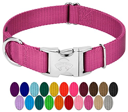 Country Brook Petz - Premium Nylon Dog Collar with Metal Buckle | Vibrant 22 Color Selection (Large, 1 Inch Wide)
