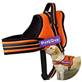 Cheap PetLove Dog Harness, Soft Leash Padded No Pull Dog Harness with All Kinds of Size (Medium, Orange)