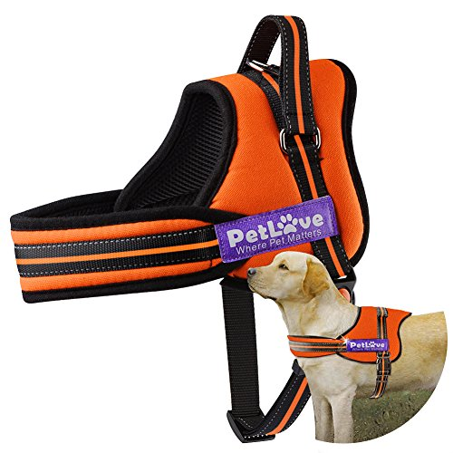 PetLove Dog Harness, Soft Leash Padded No Pull Dog Harness with All Kinds of Size (Large, Orange)