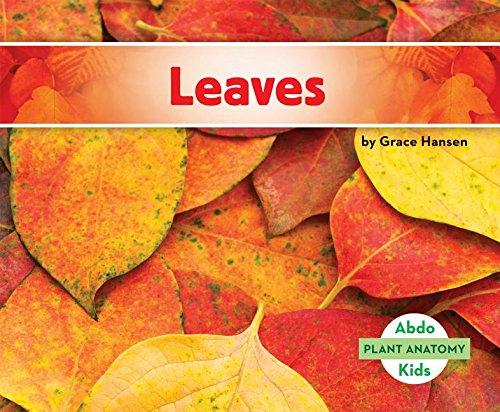 Leaves (Plant Anatomy)