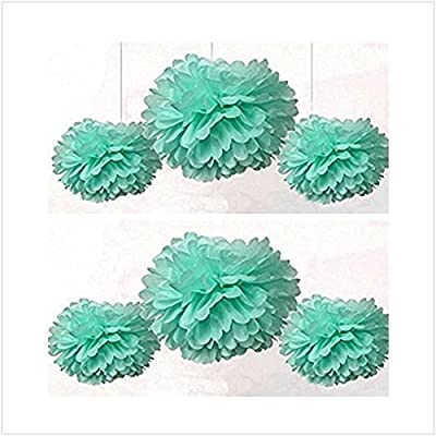 ASIBT 16PCS Mixed Sizes Mint Green Tissue Paper Pom Poms Pompoms Wedding Birthday Party Decoration Holiday Supplies