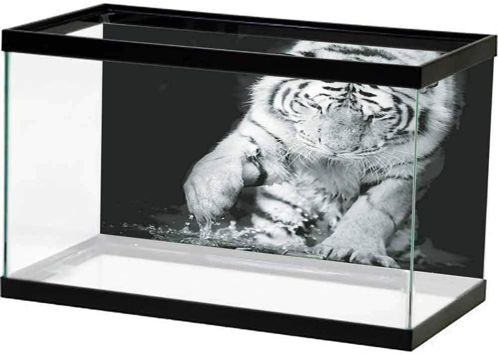 BCVHGD Under Sea Fish Aquarium Decals Poster Kitten with Vivid Blue Eyes Non-Toxic Easy Paste