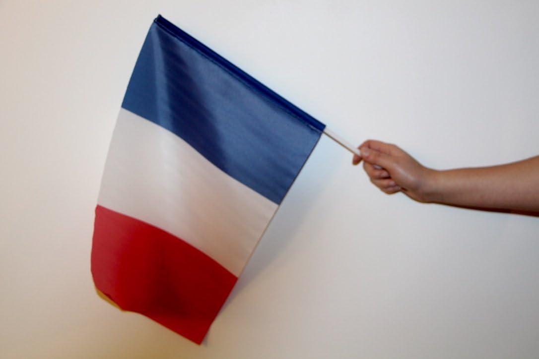 Le Drapeau Français - Bandera de Francia de mano con asta (45 x 30 cm): Amazon.es: Deportes y aire libre