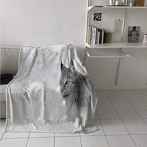maisi Hunting Digital Printing Blanket Lynx in The Central Norway Wild Cat North Cold Snowy Mountain Carnivore Predator Summer Quilt Comforter 62x60 Inch Grey White ()