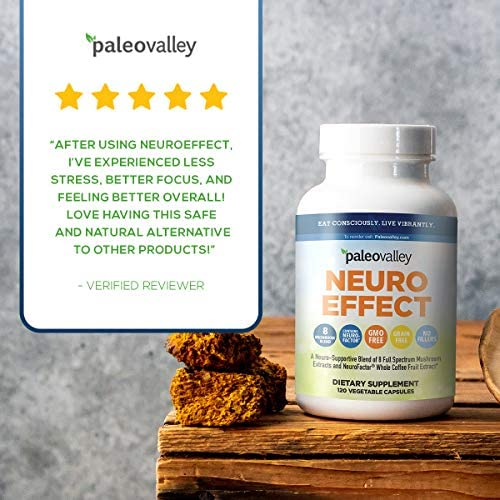 Paleovalley: NeuroEffect - Advanced Wellness and Immune Supplement - 120 Veggie Capsules - Natural Support for Focus, Memory, Stress Relief, and Energy - Flavorless - 8 Organic Mushroom Blend 6