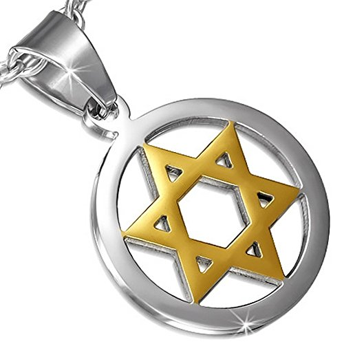 Stainless Steel Silver Gold-Tone Jewish Star David Charm Pendant Necklace by My Daily Styles