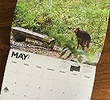 2021 Pooping Pooches White Elephant Gag Gift Calendar