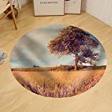 Gzhihine Custom round floor mat Beautiful Countryside Landscape. Vintage Photo of Corn Field at Summer.