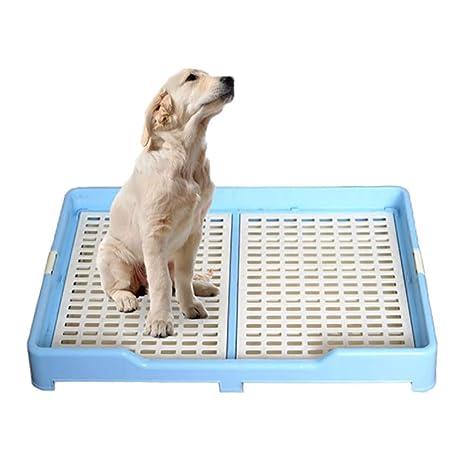 Cachorro Orinal, Tipo cajón Interior WC para Perros, Perro ...