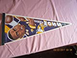 randy moss Minnesota Vikings Football pennant