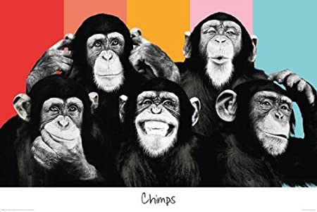 """Social Networking Crowds Out Your """"5 Chimps"""" - by Marc Weinstein - Look Up!  Weekly"""