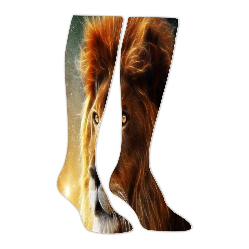 Mens Lions Under The Stars Socks Sports Leisure Fashion and Interesting Socks