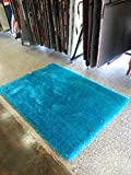 Shaggy Solid Turquoise Living Room Area Rug, Hand Tufted, Now on Sale Exact Size 5'x7′ Size 5×7(SVS)Turquoise Review