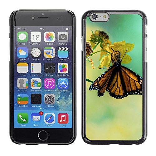 """Premio Sottile Slim Cassa Custodia Case Cover Shell // V00003645 papillon monarque sur une fleur jaune // Apple iPhone 6 6S 6G PLUS 5.5"""""""