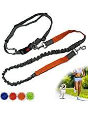 Zenify Hands Free Dog Lead for Running, Walking, Hiking, Canicross Dual Handle Comfortable Waist Belt Leash Band Reflective Stitching Adjustable Bungee Length Extendable 125cm - 190cm