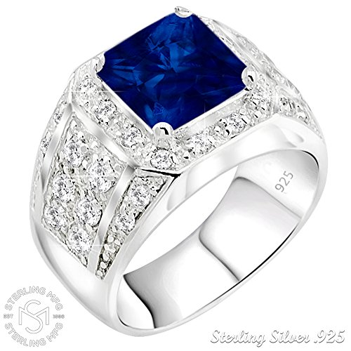 Men's Sterling Silver .925 Ring Synthetic Blue Sapphire Stone High Polish Princess Cut 32 Round Prong-Set Cubic Zirconia Clear (CZ) Stones, Platinum Plated Jewelry (8)