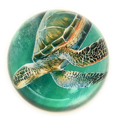 Value Arts Nautical Sea Turtle Glass Dome Paperweight, 3 Inches Diameter