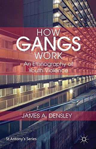 How Gangs Work: An Ethnography of Youth Violence (St Antony's)
