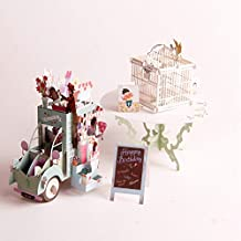 Paper Spiritz Birdcage And Flower Car 3D Pop Up Card Kit Flowers Mothers Day Birthday Graduation Anniversary Congratulations Get Well Soon to Mom Grandma Thank You Card( Pack of 2)