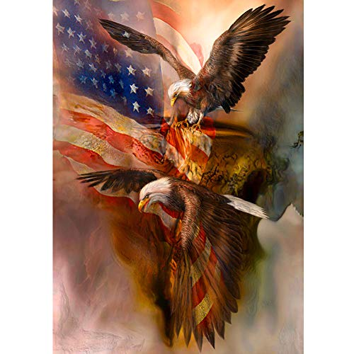 5D DIY Diamond Painting by Number Kits, Crystal Rhinestone Diamond Embroidery Paintings Pictures Arts Craft for Home Wall Decor, 11.8 X 15.7 Inch (American Flag with Eagle) ()