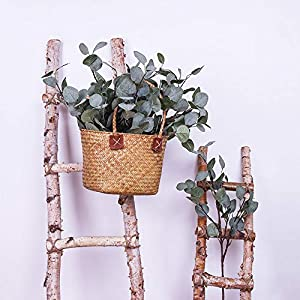 YUYAO Artificial Plants Silver Dollar Eucalyptus Leaves 6Pcs Leaf Silk Artificial Greenery Stems Fake Plants Leaves for Home Wedding Party Decoration 2