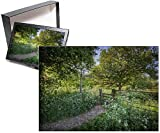 no side puzzle - Photo Jigsaw Puzzle of A countryside laneway in Dorset, England