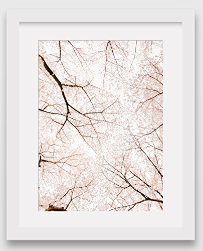 pink-blossom-print-flowering-tree-8-x-10-inches