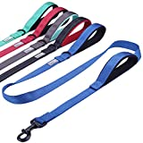 Vivaglory Dog Training Leash with 2 Padded Handles, Heavy Duty 6ft Long Reflective Safety Leash Walking Lead for Medium to Large Dogs, Blue
