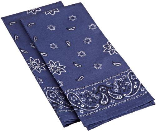 DII Out West Denim Blue Bandana Printed Dishtowel, Set of 2