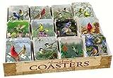 Counter Art CART91798 Bird Assortment with Counter Display 72 Coasters