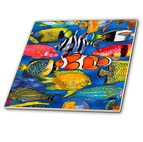 3dRose ct_5741_2 Tropical Fish-Ceramic Tile, 6-Inch