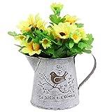 French Country Vintage Bird Decorative White Shabby Chic Mini Metal Pitcher Flower Vase - MyGift