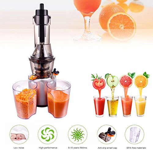 Slow Juicer, Wide Mouth Masticating Juicer for Home Appliance, 240W, Quiet Motor by JQUEEN (Image #5)
